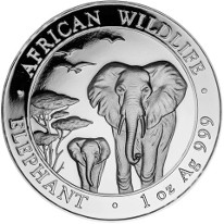 African Elephant Coins