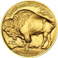 2015-american-gold-buffalo-rev