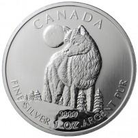 2011-wolf