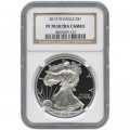 2013-w-american-silver-eagle-coin-pr70-ucam-ngc-obverse-(2)