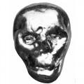 skull-new