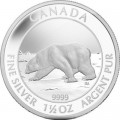 polar-bear-rev-400