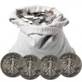 SCWLHALFS100V-bag-with-coins