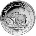 2011-elephant