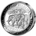 2013-silver-elephant-obverse