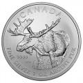 2012-canadian-moose-reverse
