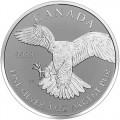2016-silver-canadian-falcon-rp-rev