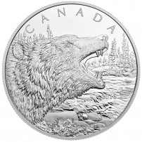 2016-500-gram-silver-canadian-roaring-grizzly-rev