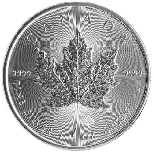Buy 2017 Canadian Silver Maple Leafs Online Jm Bullion