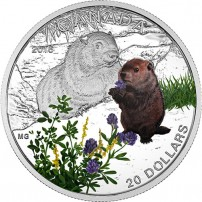2016-1-oz-proof-canadian-silver-baby-animals-woodchuck-rev