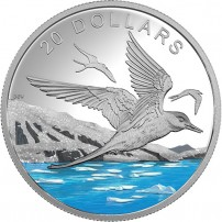 2017-1-oz-proof-canadian-silver-glistening-north-arctic-tern-rev