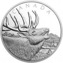 2017-500-gram-proof-canadian-silver-elk-coin-rev