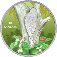 2017-1-2-oz-Proof-Canadian-Silver-Birds-Among-Natures-Colours-Northern-Flicker-Coin-Front