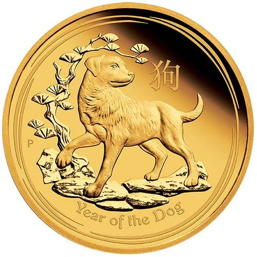 Image result for gold dog